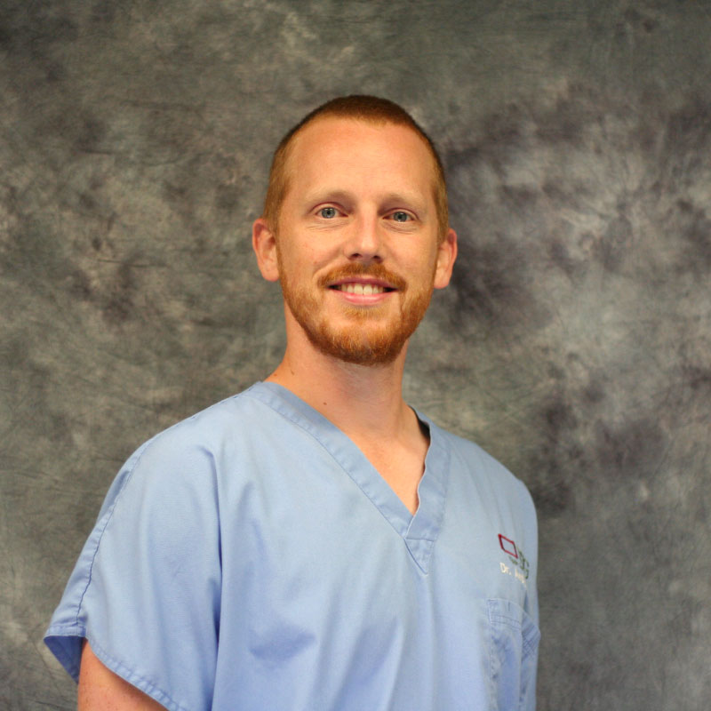 Dr. Andy Friesen Image - Tippin Dental Group