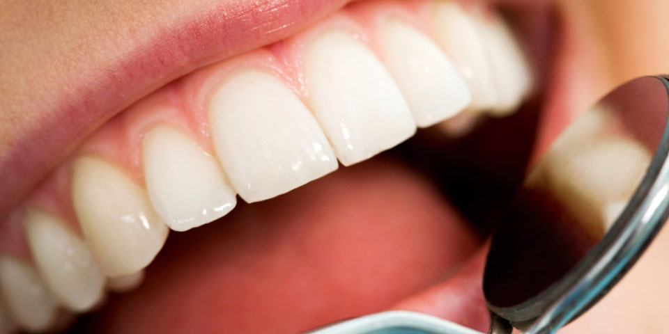 Newton DDS Featured Image - Tippin Dental Group